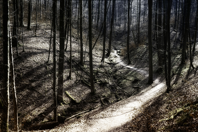 Fotograf Andreas Tschunkert